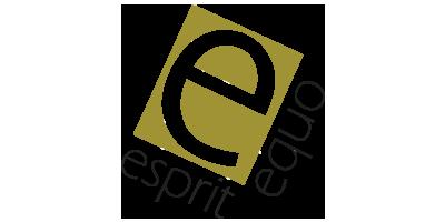 Logo_Espiritequo