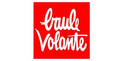 Logo_baulevolante